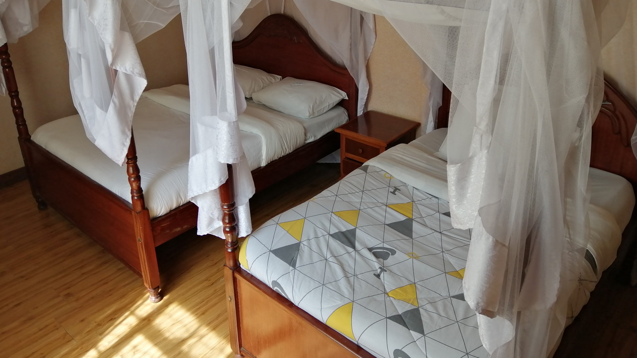 Standard Room Twin Room